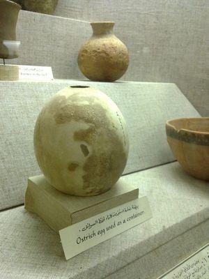 Ancient Arabian Ostrich Egg Shell, Qidfa Village, Emirate of Fujairah, United Arab Emirates