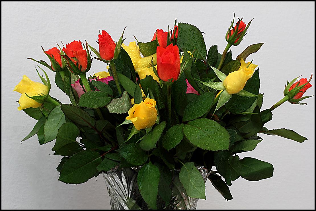 ....ancora fiori