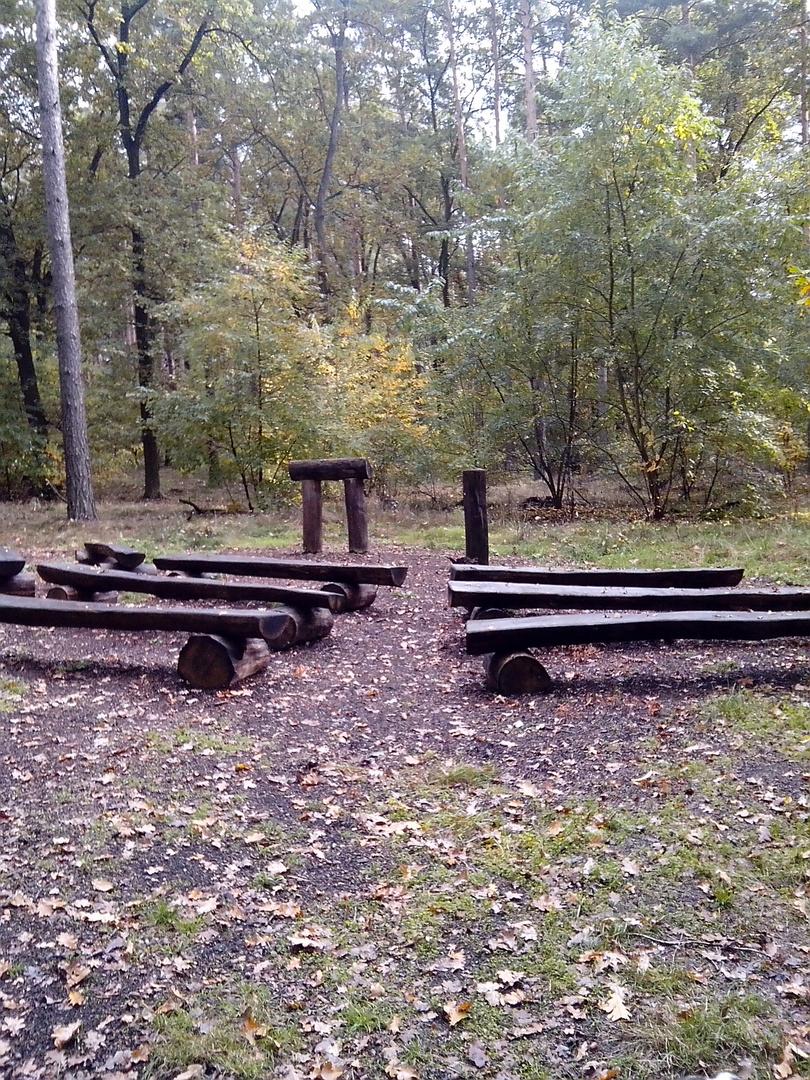 Andachtplatz in einem Friedwald