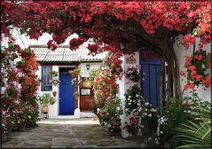 Andalusian  courtyard.