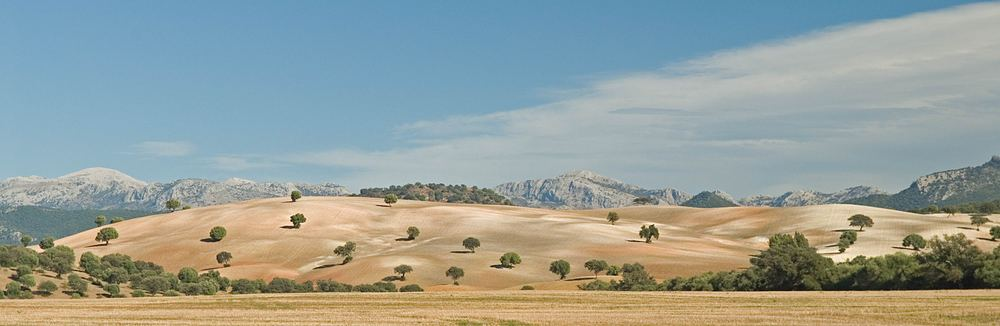 Andalusien #3