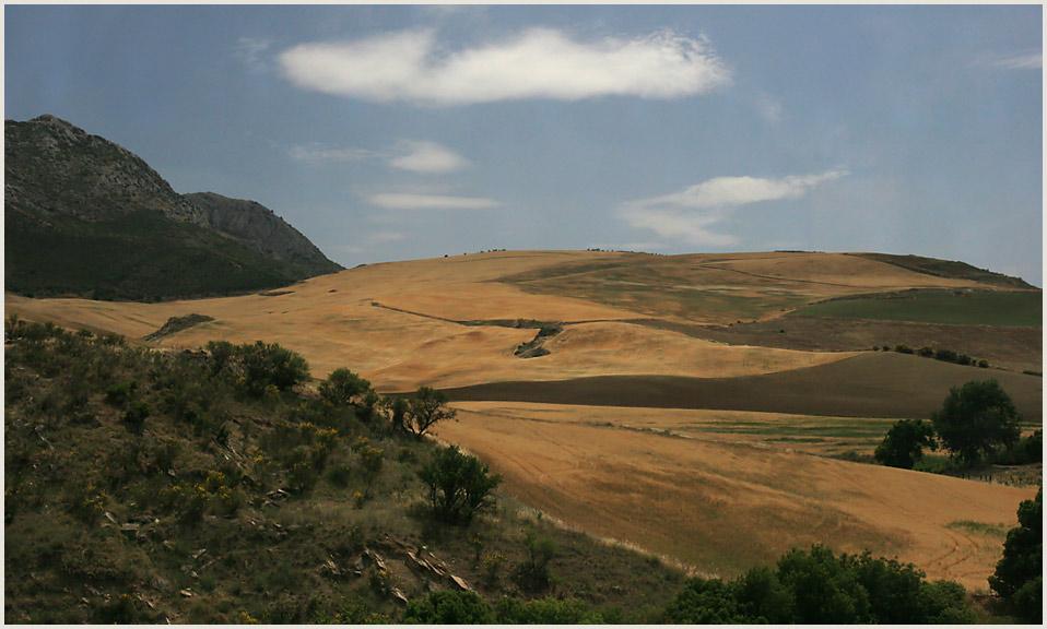Andalusische Landschaft 1