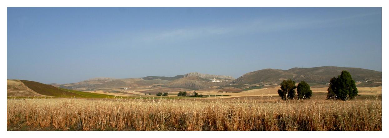 Andalusische Weite