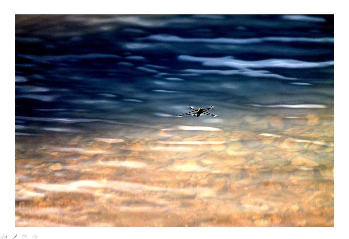 Andar sobre el agua