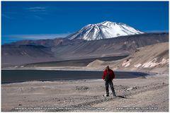 Anden/ Atacama- Argentinien/ Chile 2012