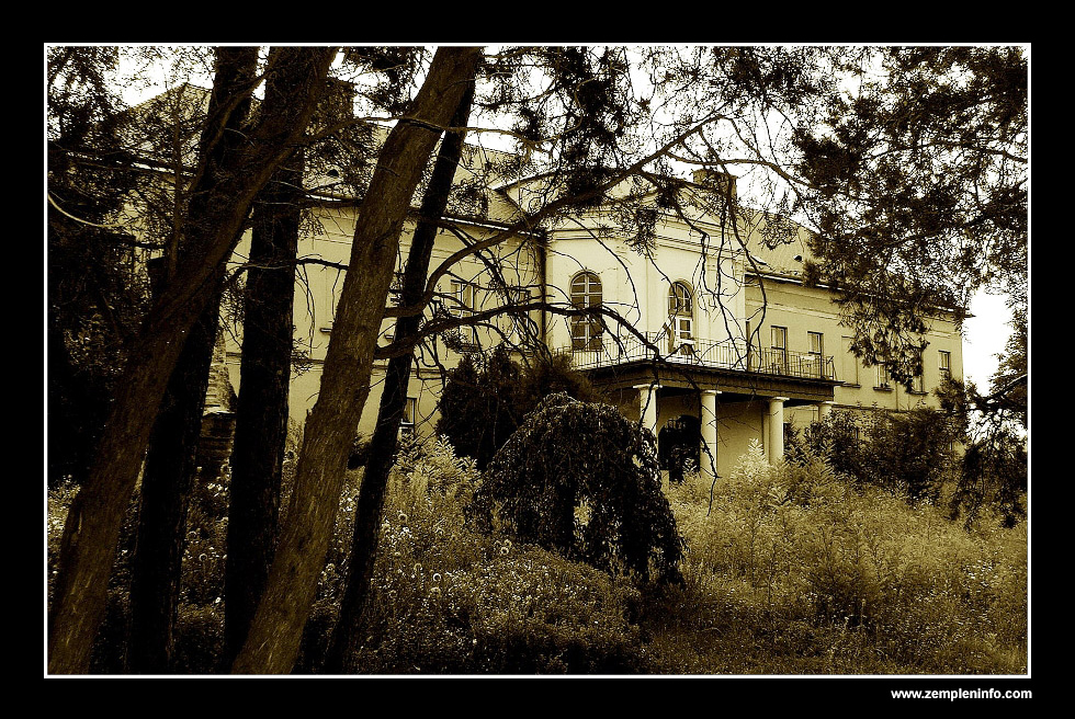 Andrassy Castle 2 (Mad/Hungary)