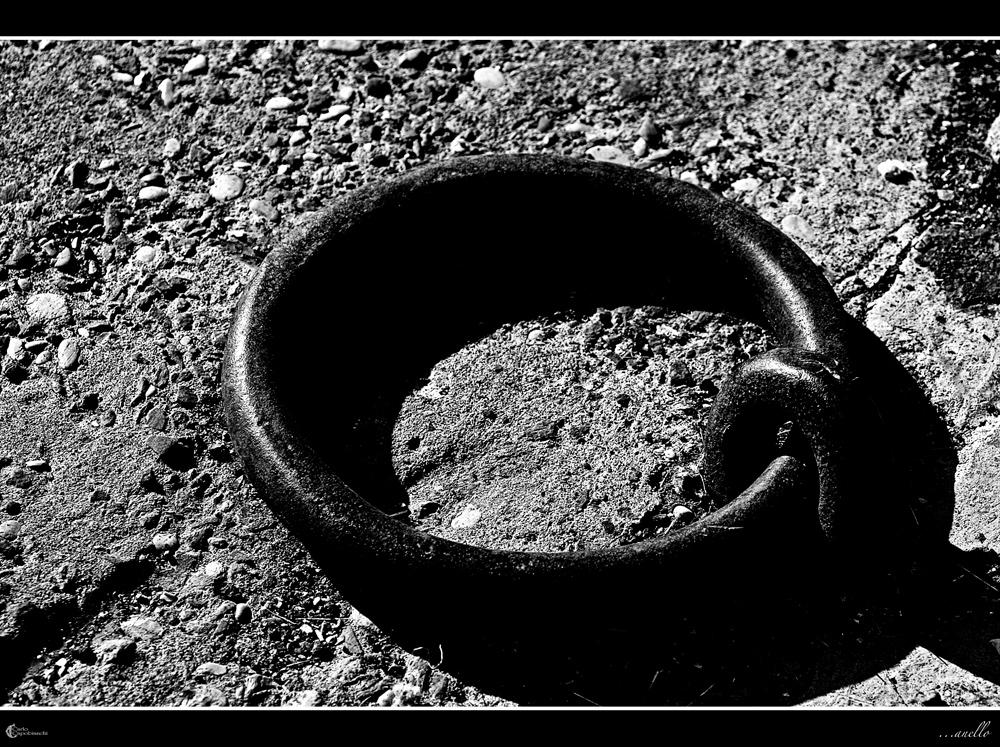 ...anello