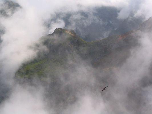 Anflug auf den Pico Ruivo
