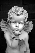 Angel for sale