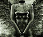 angel hostage
