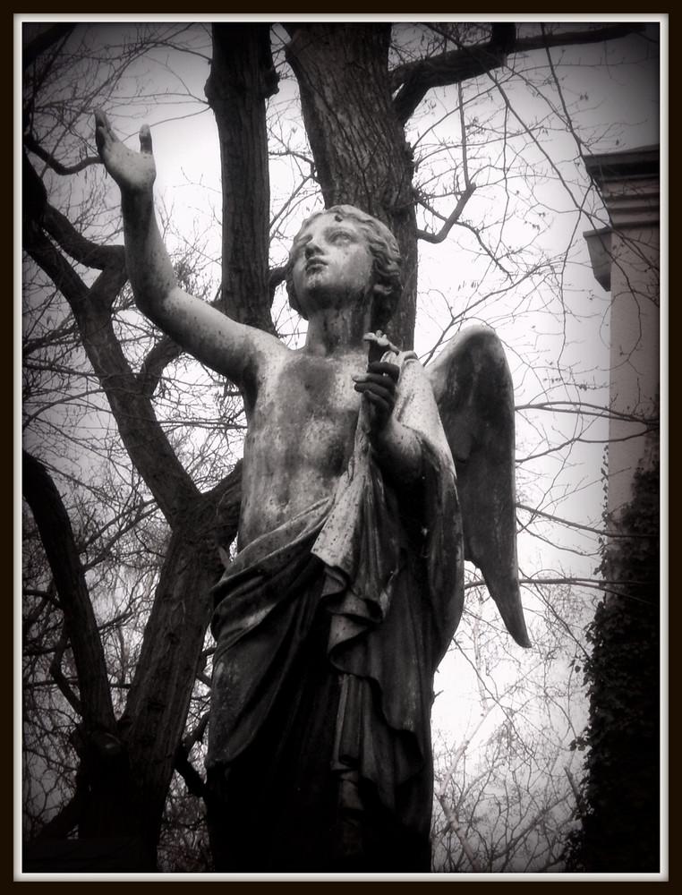 Angel of Berlin