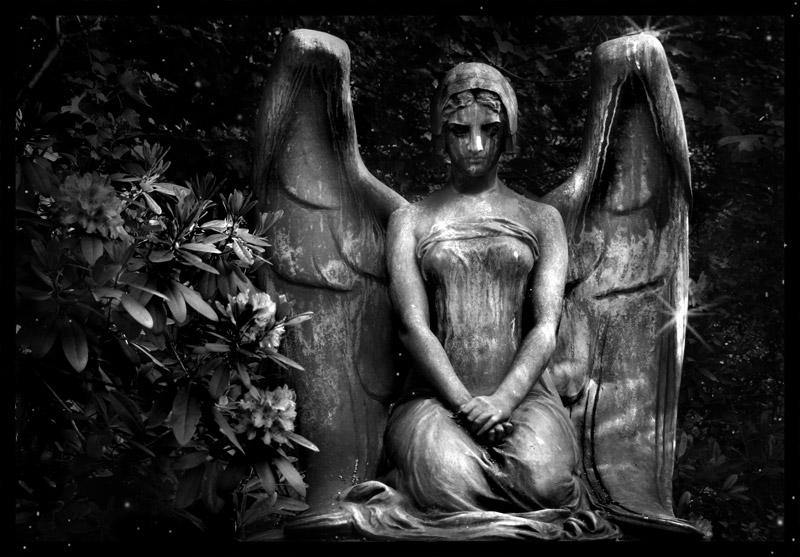 ...Angel Of Death...