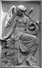 Angel of Roses