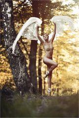 * Angel Wings *