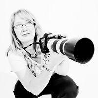 Angelika Bentin Photography