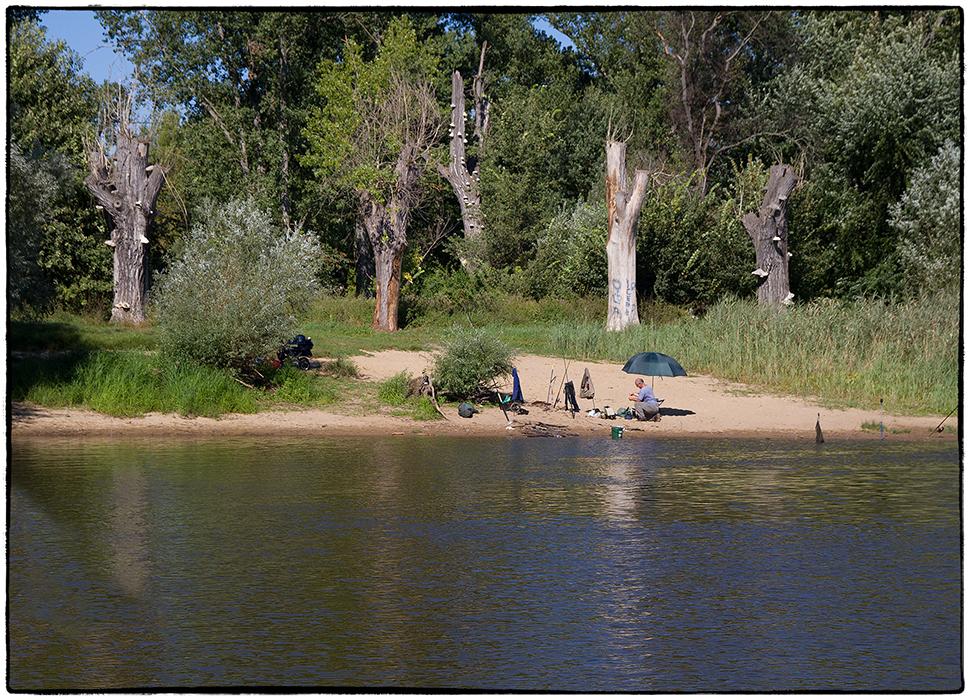 Angeln an den Ufern der Oder