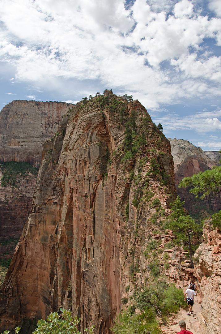Angel's Landing - Top of the Valley