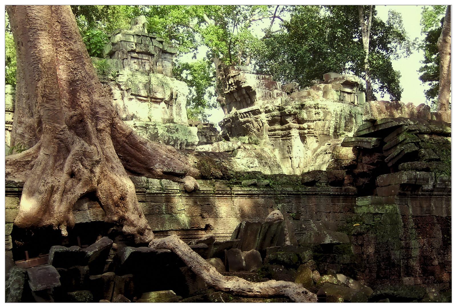 Angkor - 5