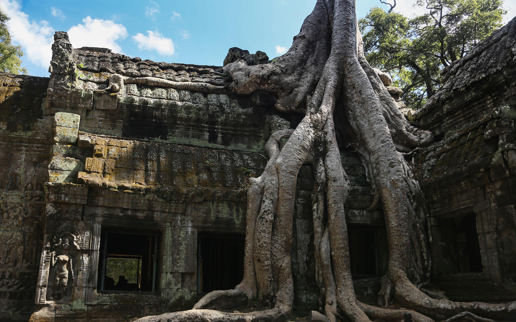 Angkor Tempel mit Baumwurzel