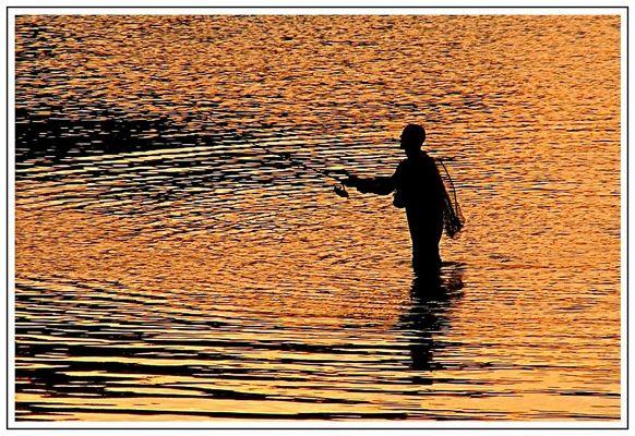 Angler (2)