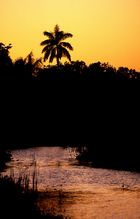 Anhinga Trail Sundown