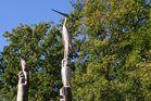Animales tallados en un tronco con una motosierra (Le Mans/Francia)
