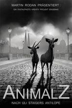 AnimalZ and AntilopE