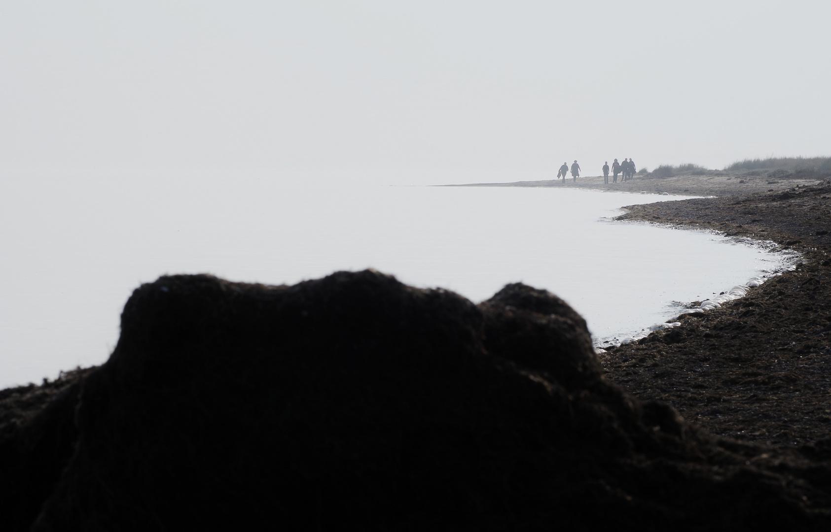 Ankömmlinge am Meer