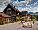Ankunft in Appenzell