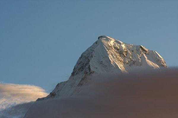 Annapurna Portrait