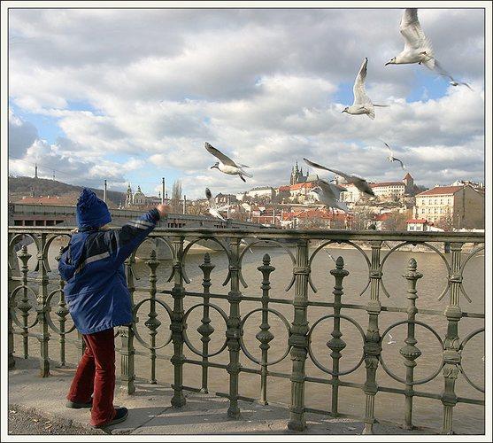 Annehmlichkeit, Prag, Gestern.