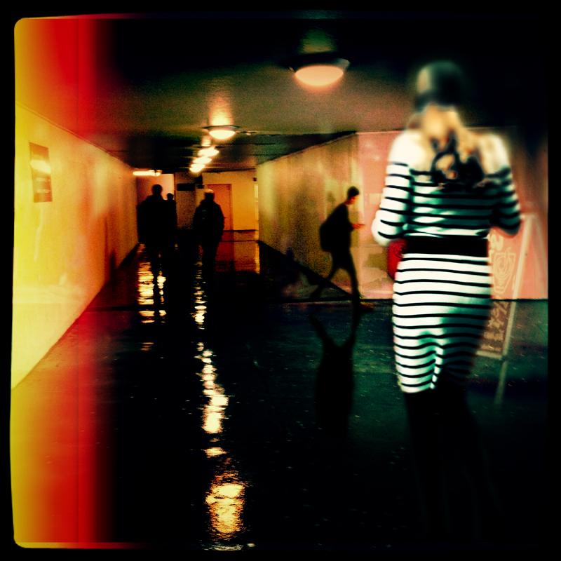 anonymes Zebra.