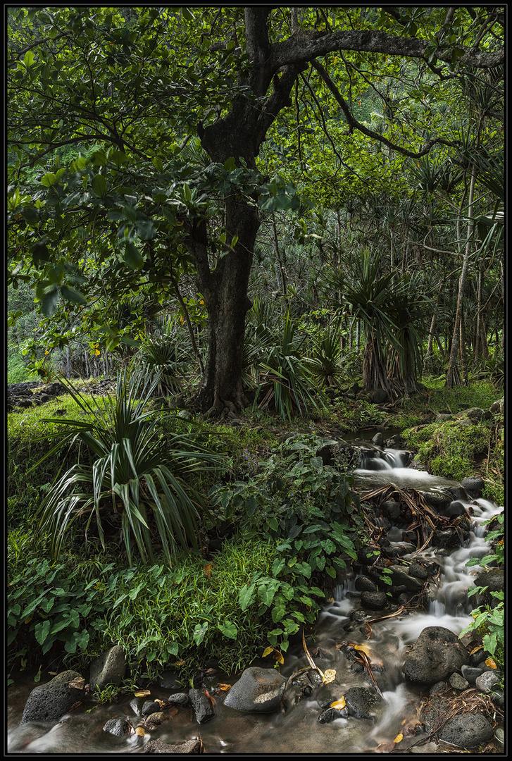 Anse des Cascades - La Réunion