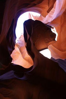 Antalopy Canyon USA