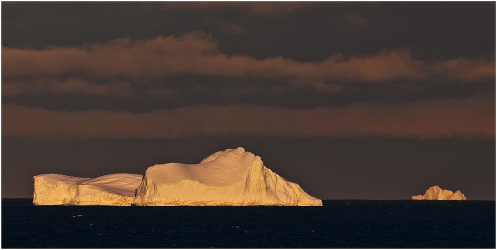 [ Antarctic Sound ]
