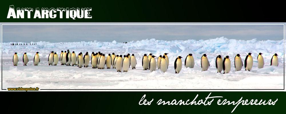 Antarctique, les marcheurs du pôle