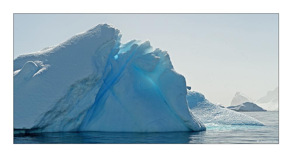 Antarktika [148] - Ein bißchen Eis