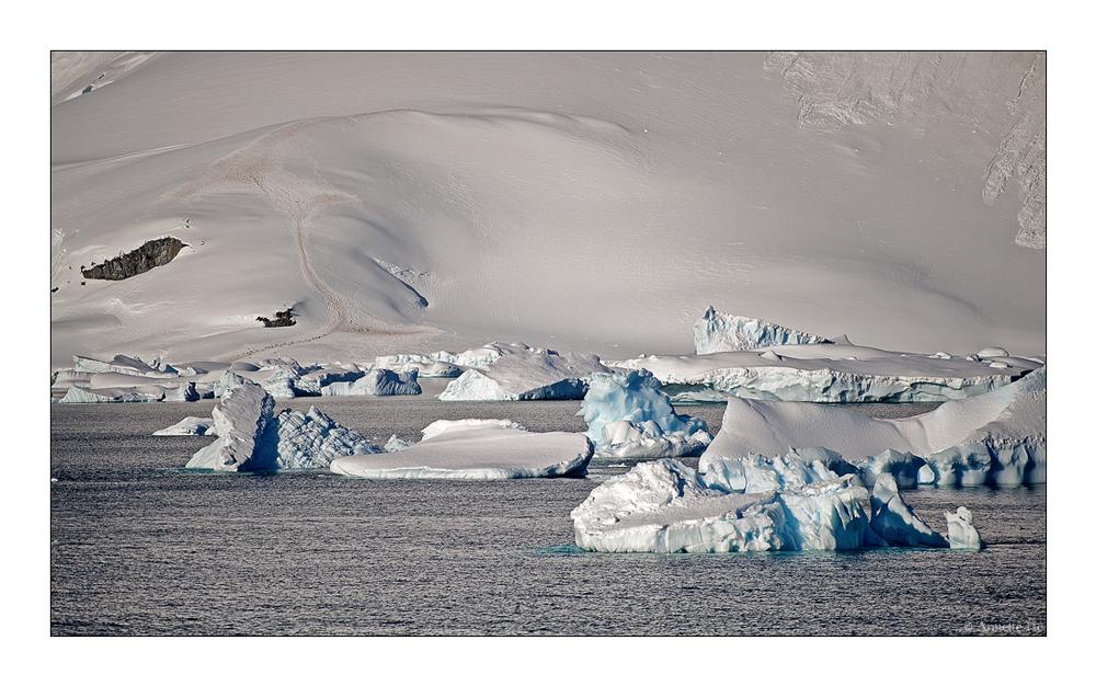 Antarktika [72]