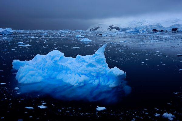 Antarktis Foto- Expeditionsreise 2013 Impression 2