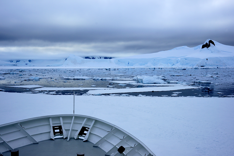 Antarktis Foto- Expeditionsreise 2013 Impression 7