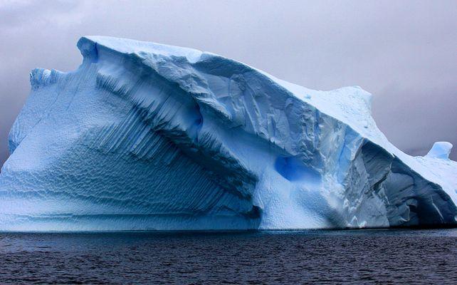 Antártica, edén de hielo