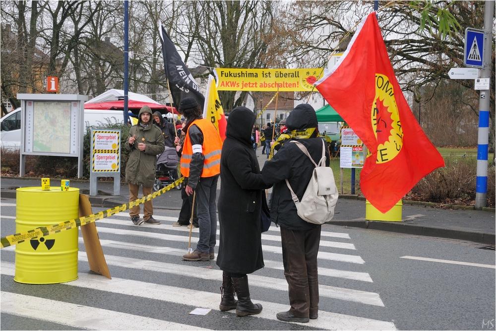 Anti-Atomkraft- Demo 2013 # 1