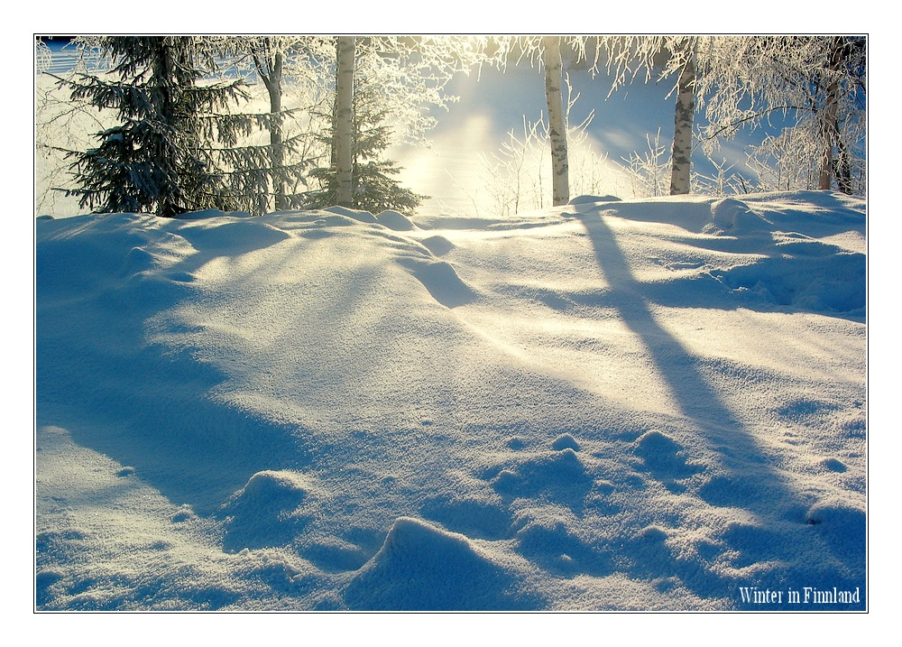 Anticipation of winter