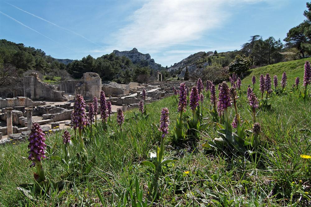 Antike Stadt