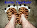 Antons Tigerkatze