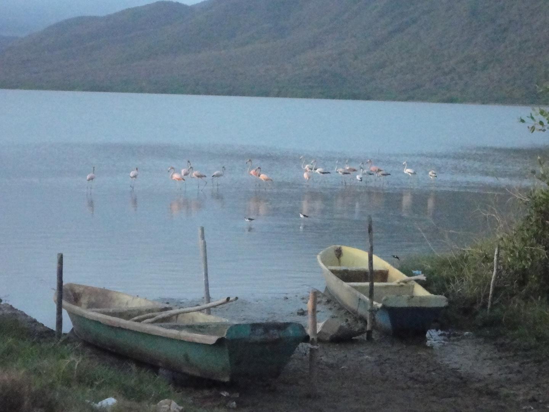 .Anzoategui ,Laguna de Unare , El HATILLO