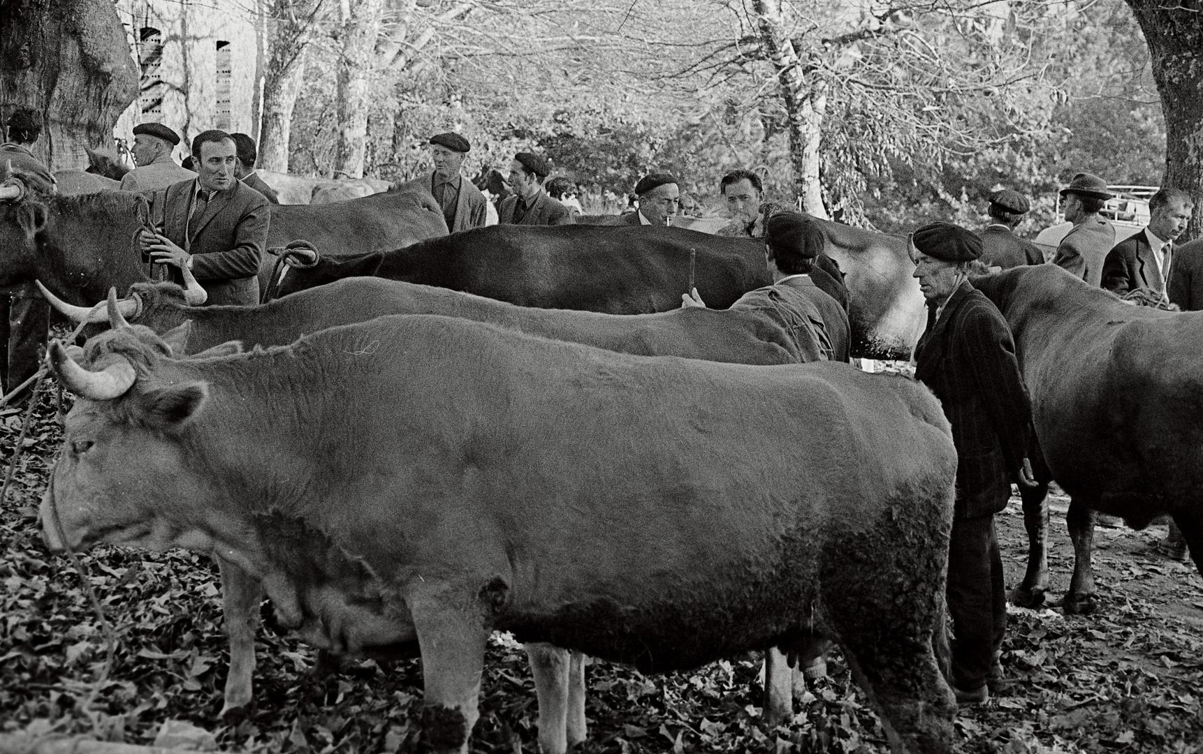 Año 1-964 - EN LA FÉRIA