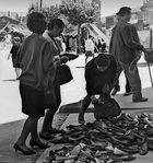 Año 1.965- Mercado