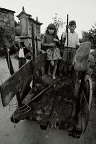 AÑO 1.974 - FLORES PARA LA CASA