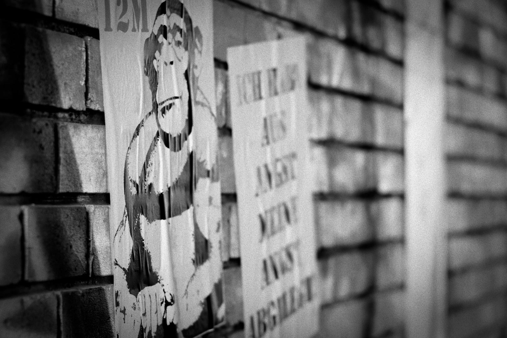 ape occupy